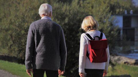 Zdjecie przedstawia spacerujące osoby